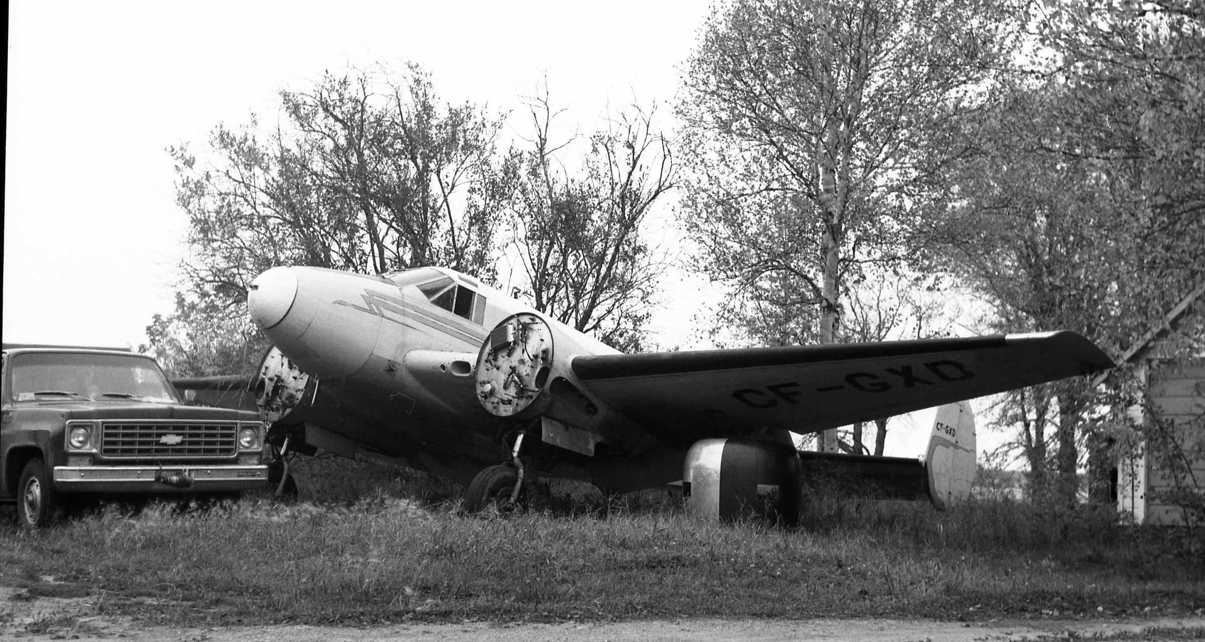 Blog 14A Turner Beech CF-GXD